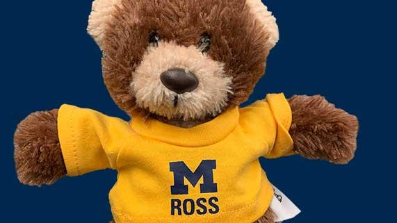 Ross teddy bear