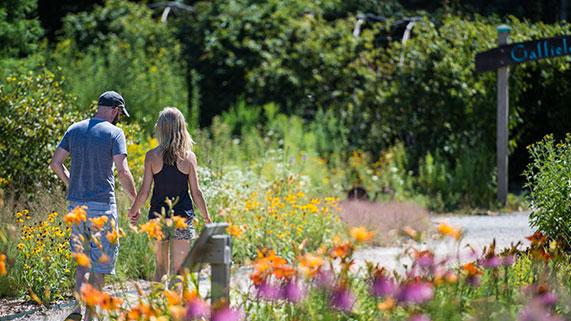 Nature area in Ann Arbor