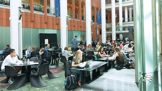 students studying in the wintergarden