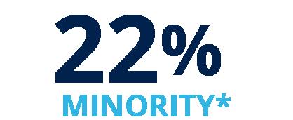 22% U.S. Minority*