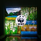 WWF MAP team members observed this stained glass window.